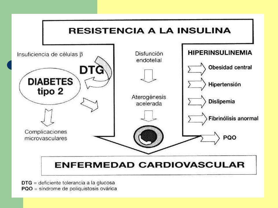 Resistencia a la Insulina Respuesta de la Insulina Inadecuada Hiperinsulinemia compensatoria Diabetes Tipo 2 Síndrome de Resistencia a la Insulina Enfermedad aterosclerótica cardiovascular Retinopatía Nefropatía Neuropatía Hipertensión Stroke PCOS