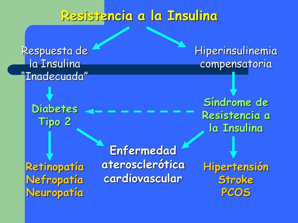 Resistencia a la Insulina Respuesta de la Insulina Inadecuada Hiperinsulinemia compensatoria Diabetes Tipo 2 Síndrome de Resistencia a la Insulina Enf