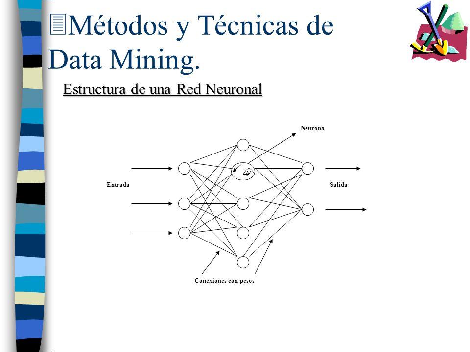 3Métodos y Técnicas de Data Mining. Estructura de una Red Neuronal Conexiones con pesos Neurona EntradaSalida