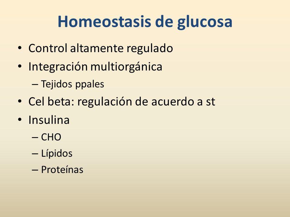 Homeostasis de glucosa Control altamente regulado Integración multiorgánica – Tejidos ppales Cel beta: regulación de acuerdo a st Insulina – CHO – Líp