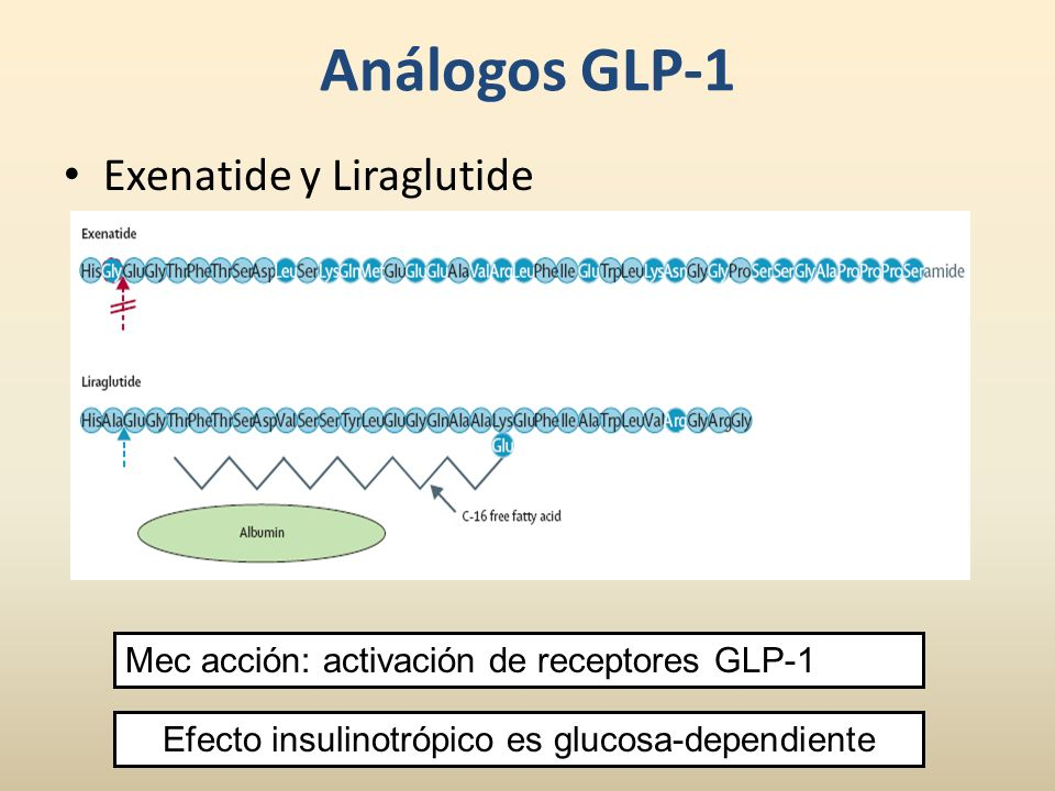 Análogos GLP-1 Exenatide y Liraglutide Mec acción: activación de receptores GLP-1 Efecto insulinotrópico es glucosa-dependiente