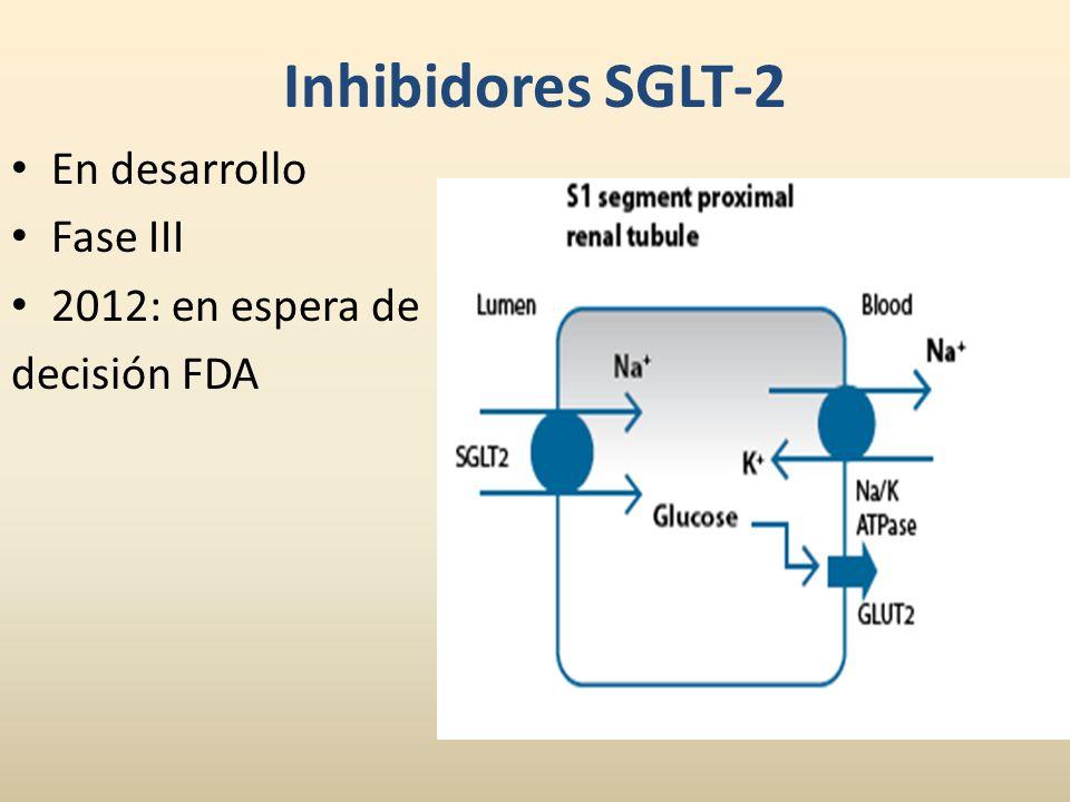 Inhibidores SGLT-2 En desarrollo Fase III 2012: en espera de decisión FDA