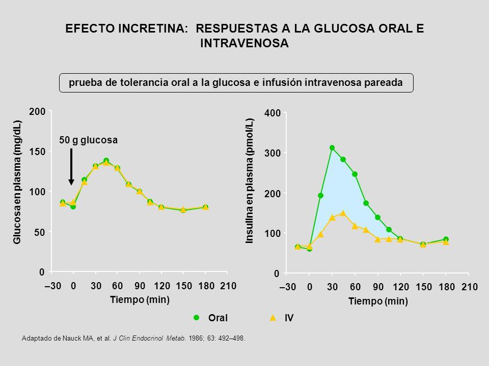 Adaptado de Nauck MA, et al. J Clin Endocrinol Metab. 1986; 63: 492–498. prueba de tolerancia oral a la glucosa e infusión intravenosa pareada Glucosa