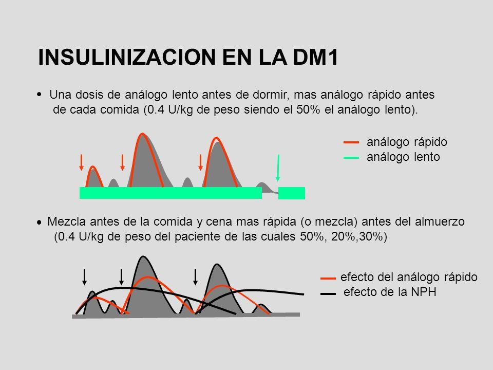 INSULINIZACION EN LA DM1 Una dosis de análogo lento antes de dormir, mas análogo rápido antes de cada comida (0.4 U/kg de peso siendo el 50% el análog