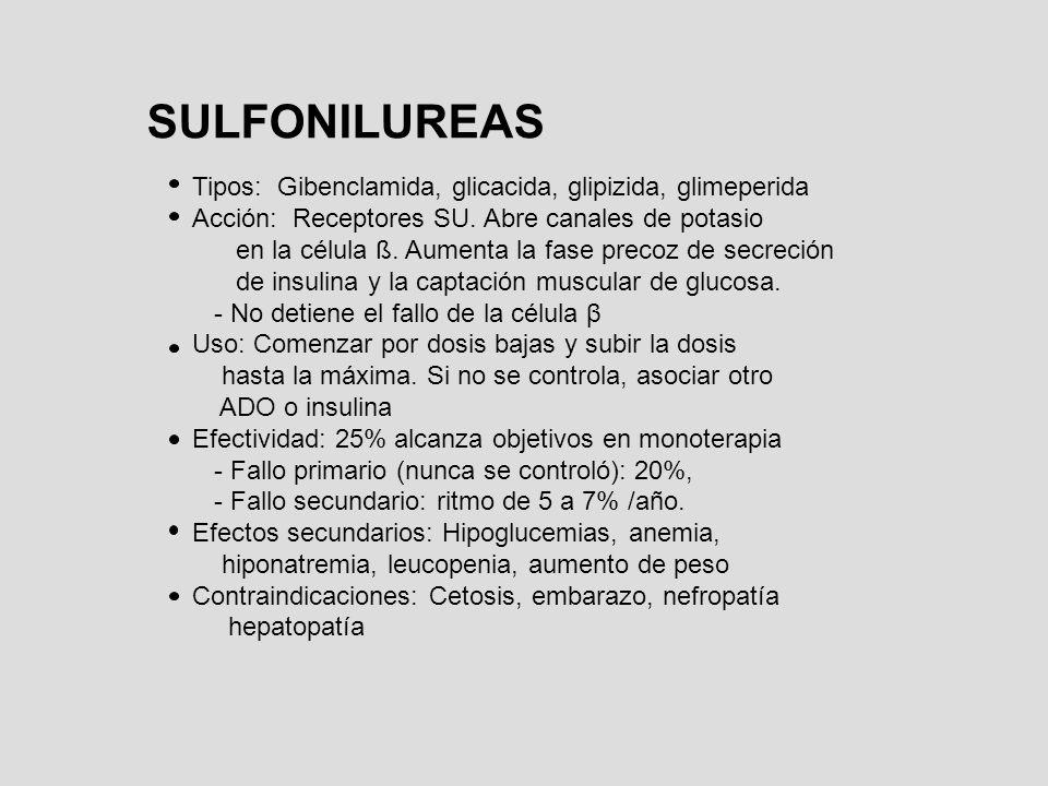 SULFONILUREAS Tipos: Gibenclamida, glicacida, glipizida, glimeperida Acción: Receptores SU. Abre canales de potasio en la célula ß. Aumenta la fase pr