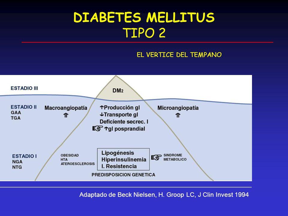 DIABETES MELLITUS TIPO 2 EL VERTICE DEL TEMPANO Adaptado de Beck Nielsen, H. Groop LC, J Clin Invest 1994