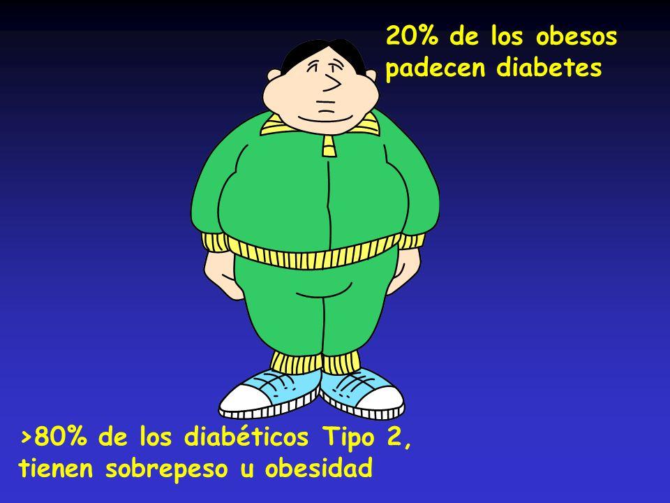 >80% de los diabéticos Tipo 2, tienen sobrepeso u obesidad 20% de los obesos padecen diabetes