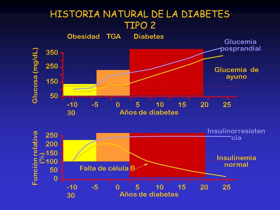 DiabetesTGAObesidad 350 250 150 50 250 200 150 100 50 0 -10 -5 0 5 10 15 20 25 30 Glucosa (mg/dL) Función relativa (%) HISTORIA NATURAL DE LA DIABETES