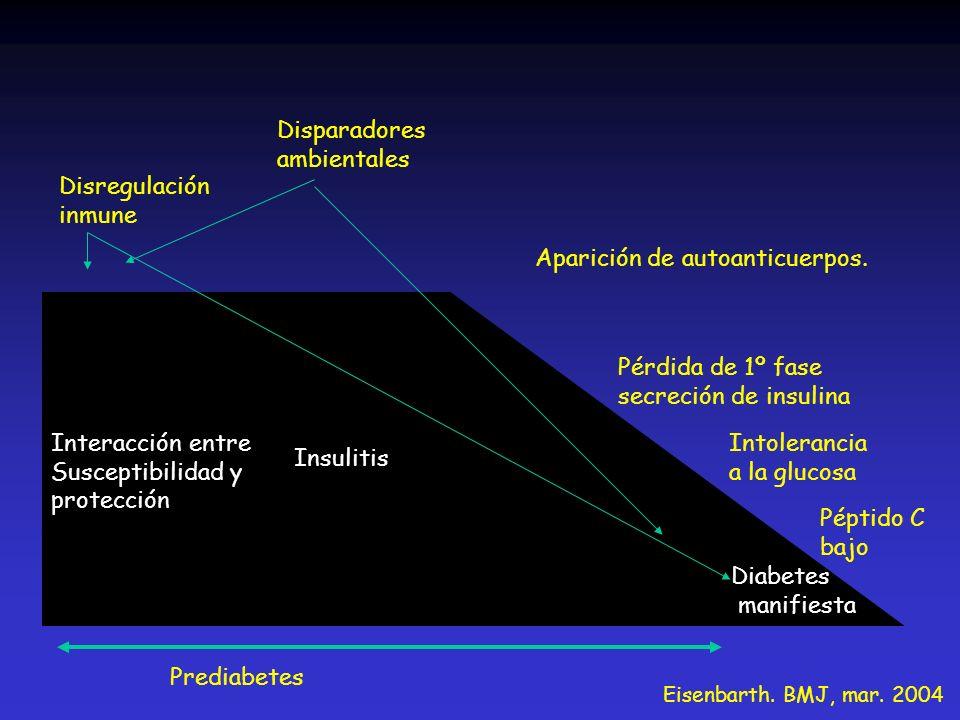 Interacción entre Susceptibilidad y protección Insulitis Disregulación inmune Disparadores ambientales Prediabetes Diabetes manifiesta Aparición de au