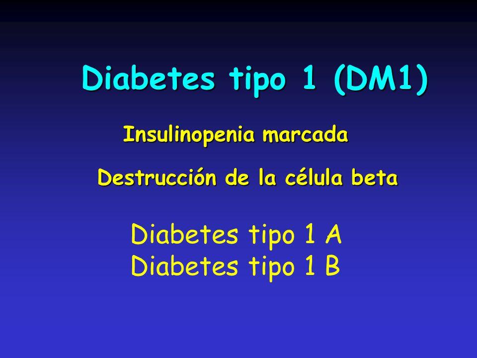 Diabetes tipo 1 (DM1) Diabetes tipo 1 (DM1) Destrucción de la célula beta Insulinopenia marcada Diabetes tipo 1 A Diabetes tipo 1 B