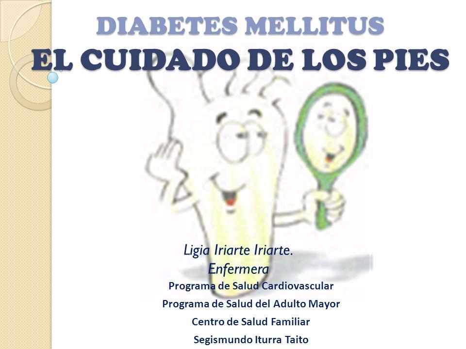 DIABETES MELLITUS EL CUIDADO DE LOS PIES Ligia Iriarte Iriarte. Enfermera Programa de Salud Cardiovascular Programa de Salud del Adulto Mayor Centro d