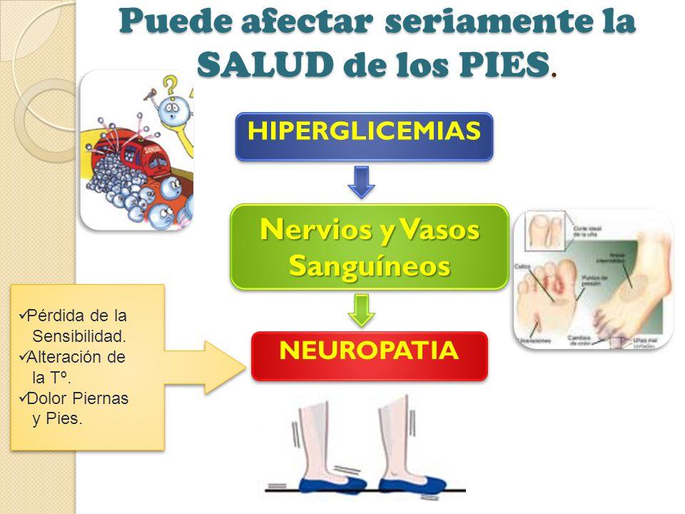 Puede afectar seriamente la SALUD de los PIES. HIPERGLICEMIAS Nervios y Vasos Sanguíneos NEUROPATIA Pérdida de la Sensibilidad. Alteración de la Tº. D