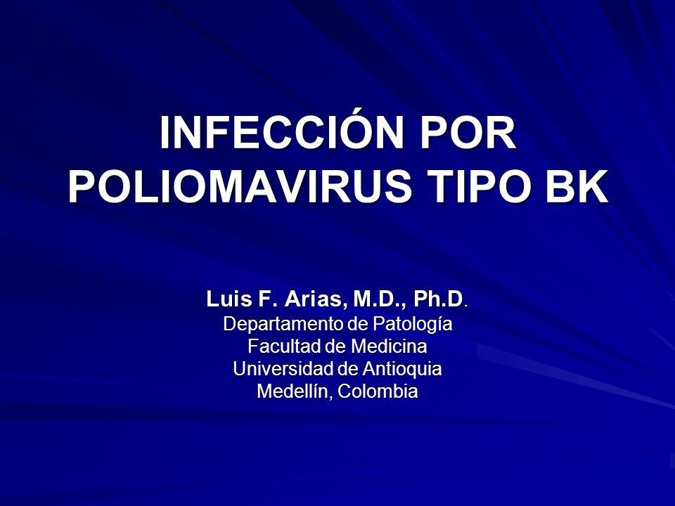 INFECCIÓN POR POLIOMAVIRUS TIPO BK Luis F. Arias, M.D., Ph.D. Departamento de Patología Facultad de Medicina Universidad de Antioquia Medellín, Colomb