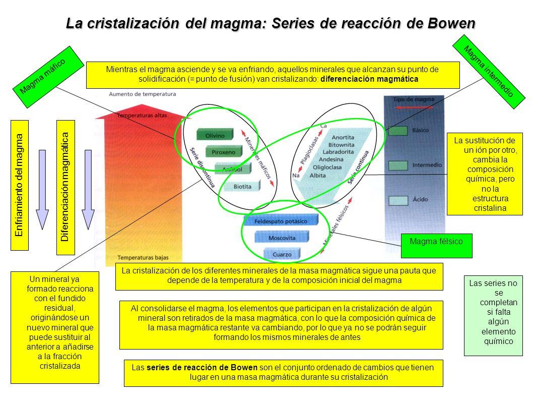 La cristalización del magma: Series de reacción de Bowen Mientras el magma asciende y se va enfriando, aquellos minerales que alcanzan su punto de sol