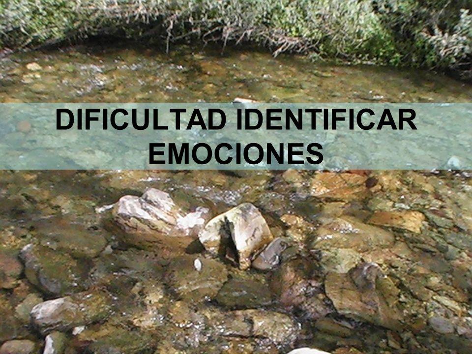 12 DIFICULTAD IDENTIFICAR EMOCIONES