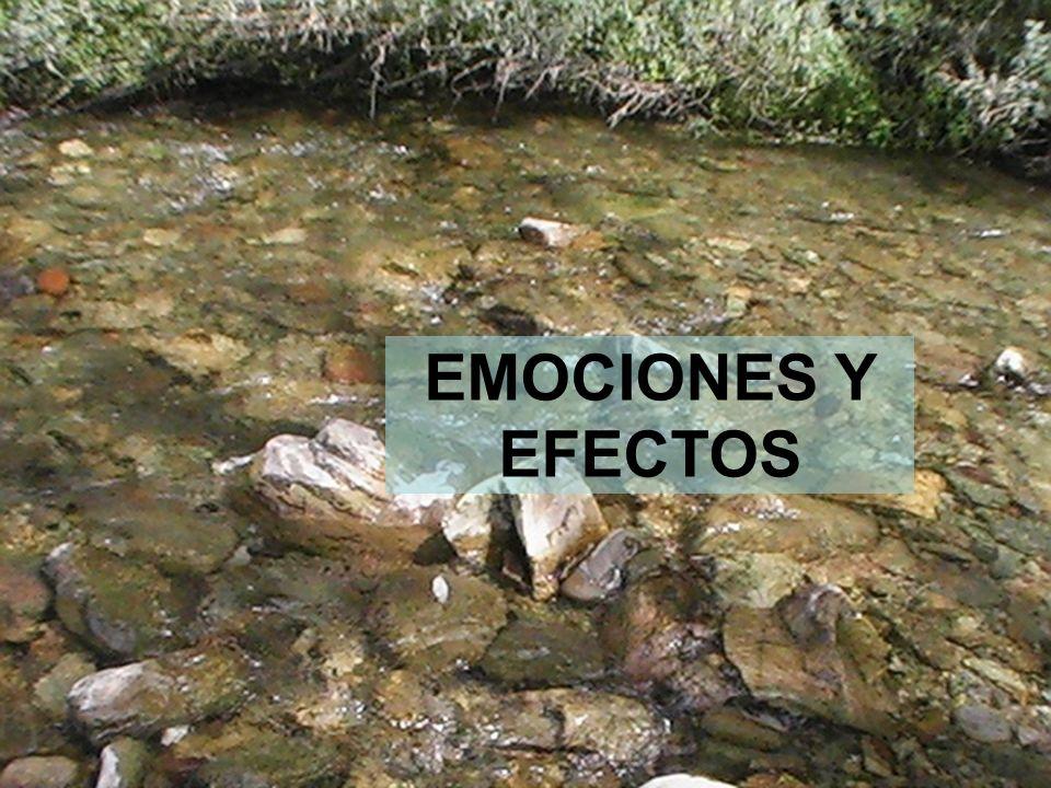 18 EMOCIONES Y EFECTOS