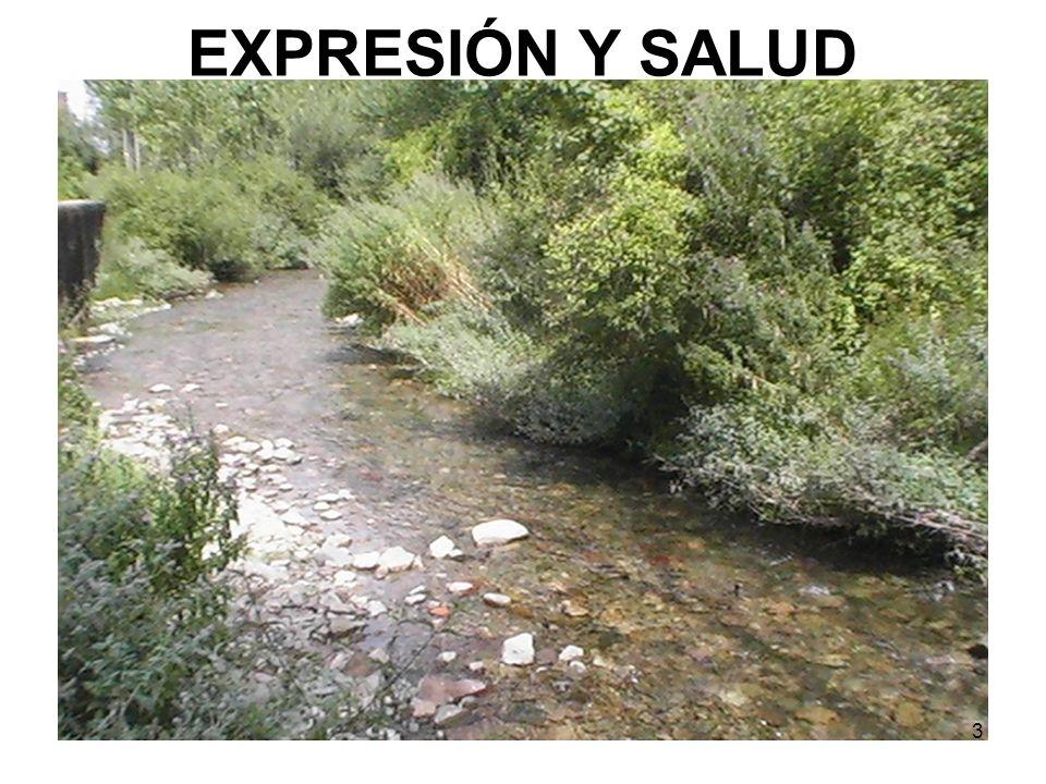 3 EXPRESIÓN Y SALUD