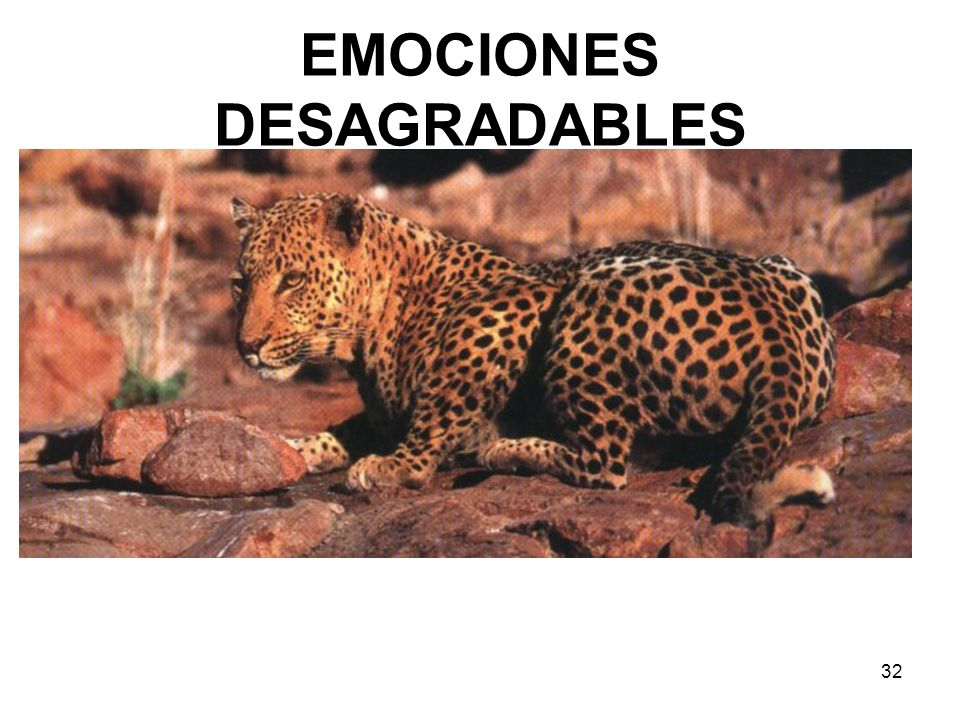 32 EMOCIONES DESAGRADABLES