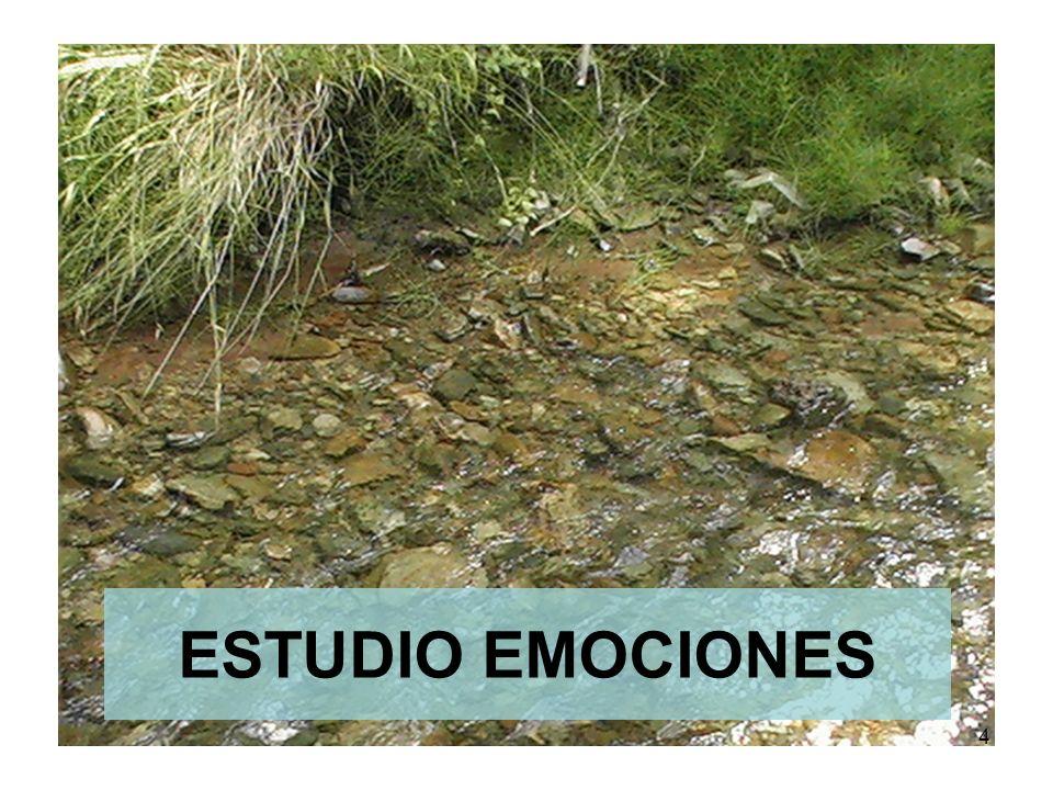 ESTUDIO EMOCIONES 4