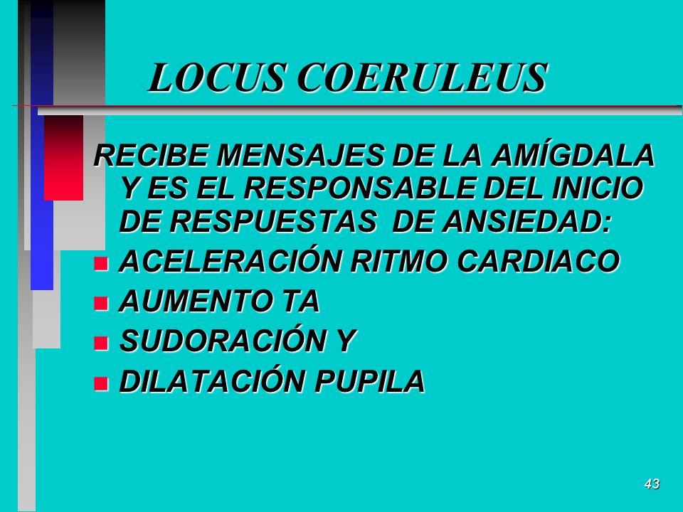 43 LOCUS COERULEUS RECIBE MENSAJES DE LA AMÍGDALA Y ES EL RESPONSABLE DEL INICIO DE RESPUESTAS DE ANSIEDAD: n ACELERACIÓN RITMO CARDIACO n AUMENTO TA n SUDORACIÓN Y n DILATACIÓN PUPILA