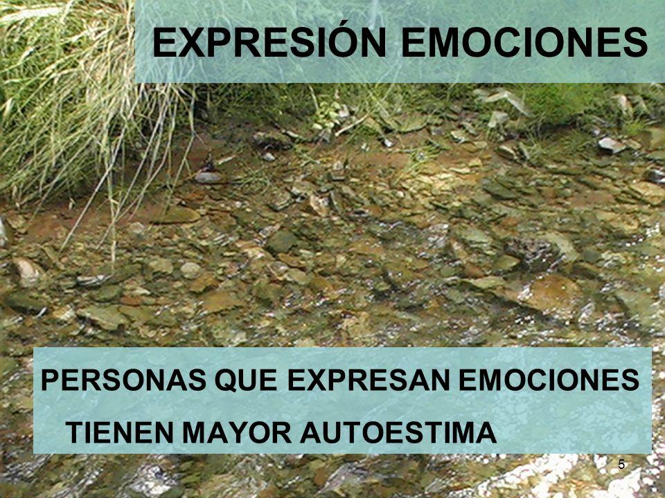 EXPRESIÓN EMOCIONES PERSONAS QUE EXPRESAN EMOCIONES TIENEN MAYOR AUTOESTIMA 5