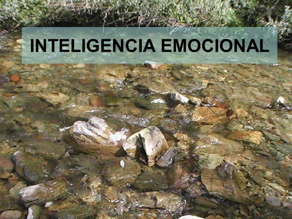 6 INTELIGENCIA EMOCIONAL