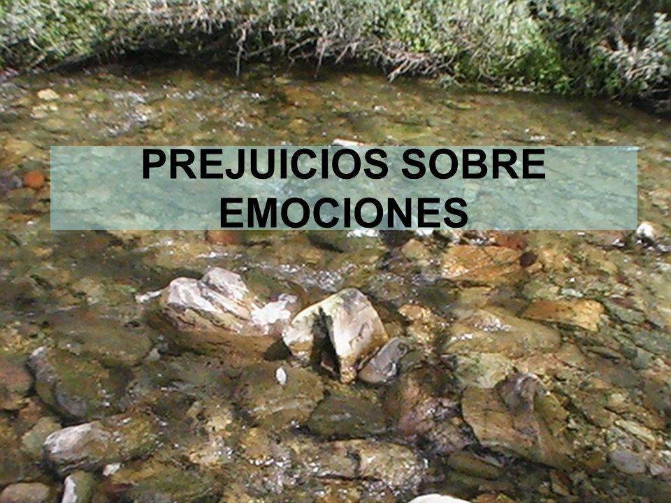 8 PREJUICIOS SOBRE EMOCIONES