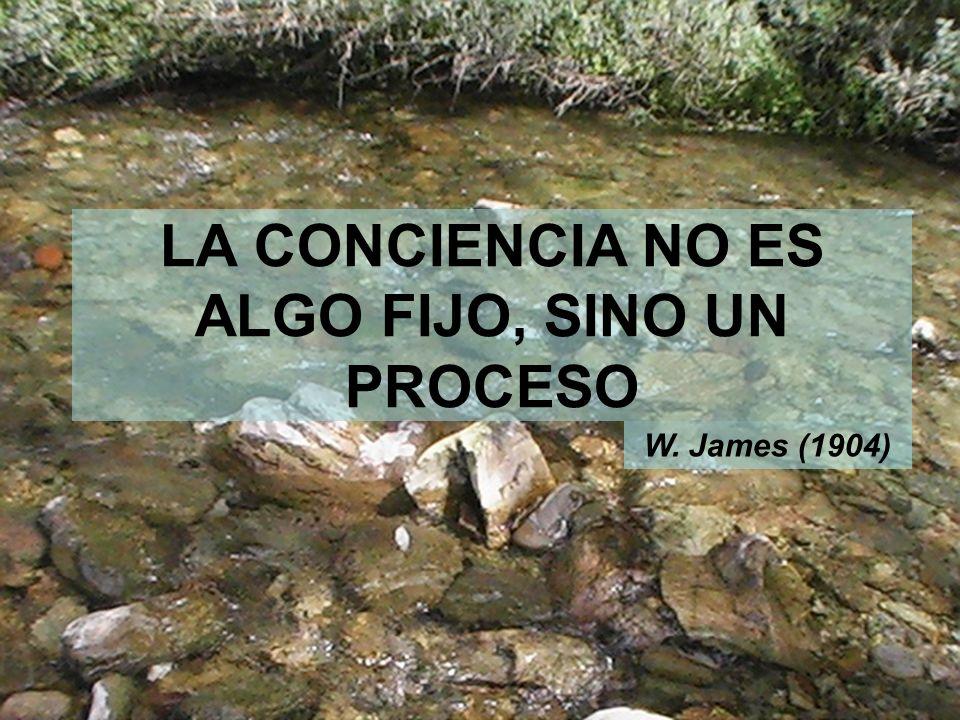 9 LA CONCIENCIA NO ES ALGO FIJO, SINO UN PROCESO W. James (1904)