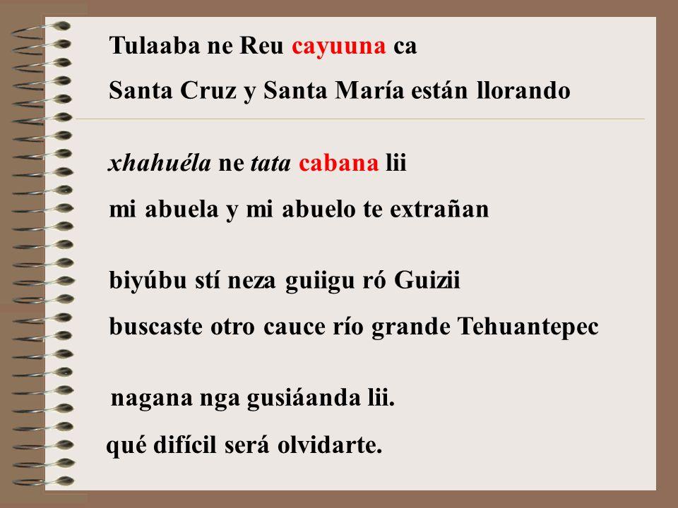 Tulaaba ne Reu cayuuna ca xhahuéla ne tata cabana lii biyúbu stí neza guiigu ró Guizii nagana nga gusiáanda lii.