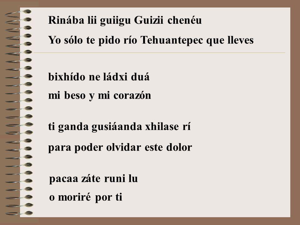 Rinába lii guiigu Guizii chenéu bixhído ne ládxi duá ti ganda gusiáanda xhilase rí pacaa záte runi lu Yo sólo te pido río Tehuantepec que lleves mi beso y mi corazón para poder olvidar este dolor o moriré por ti