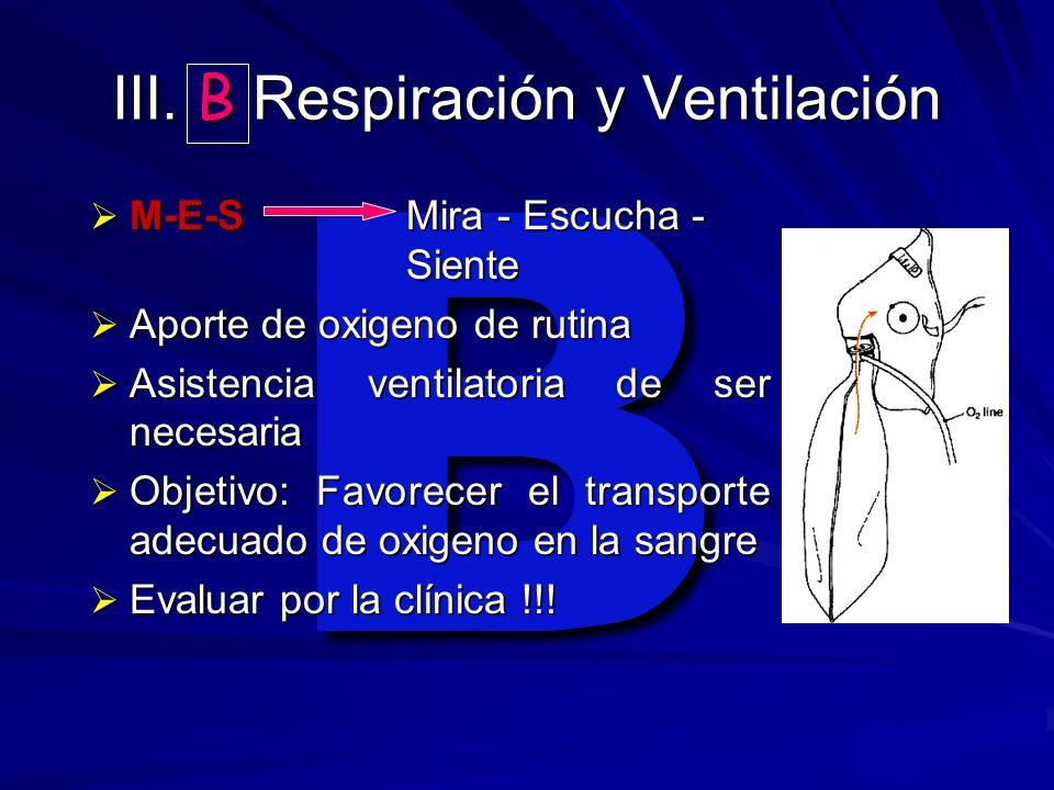 B III. B Respiración y Ventilación M-E-SMira - Escucha - Siente M-E-SMira - Escucha - Siente Aporte de oxigeno de rutina Aporte de oxigeno de rutina A