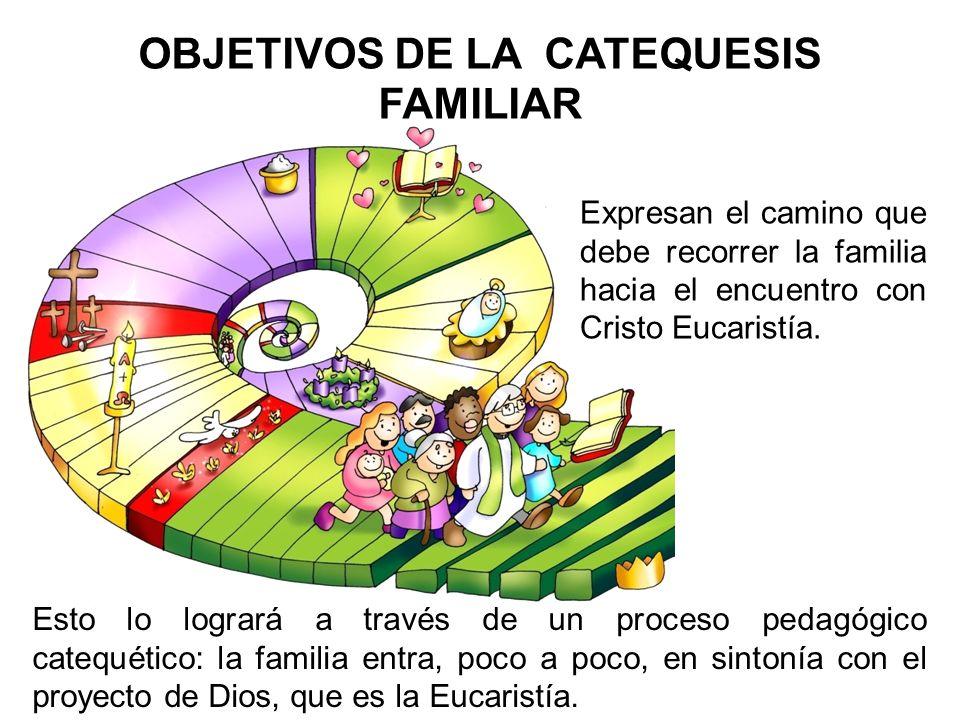 OBJETIVOS DE LA CATEQUESIS FAMILIAR Expresan el camino que debe recorrer la familia hacia el encuentro con Cristo Eucaristía. Esto lo logrará a través