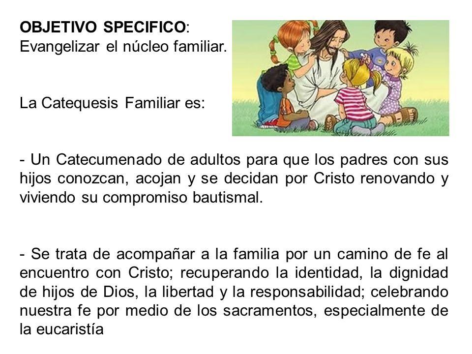 OBJETIVO SPECIFICO: Evangelizar el núcleo familiar. La Catequesis Familiar es: - Un Catecumenado de adultos para que los padres con sus hijos conozcan