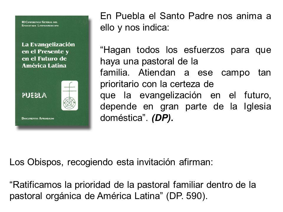 En Puebla el Santo Padre nos anima a ello y nos indica: Hagan todos los esfuerzos para que haya una pastoral de la familia. Atiendan a ese campo tan p