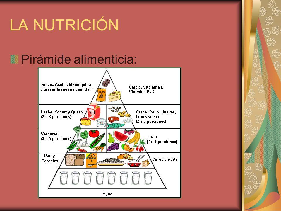 LA NUTRICIÓN Pirámide alimenticia: