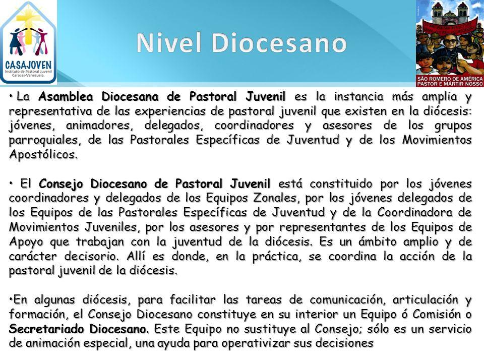 La Asamblea Diocesana de Pastoral Juvenil es la instancia más amplia y representativa de las experiencias de pastoral juvenil que existen en la dióces