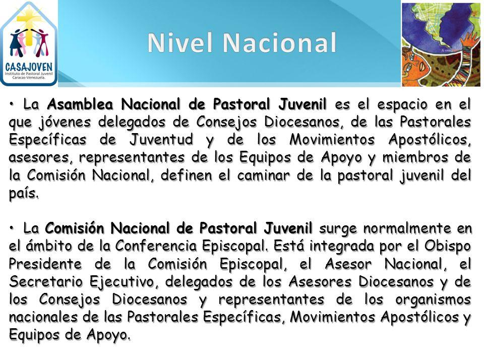 La Asamblea Nacional de Pastoral Juvenil es el espacio en el que jóvenes delegados de Consejos Diocesanos, de las Pastorales Específicas de Juventud y