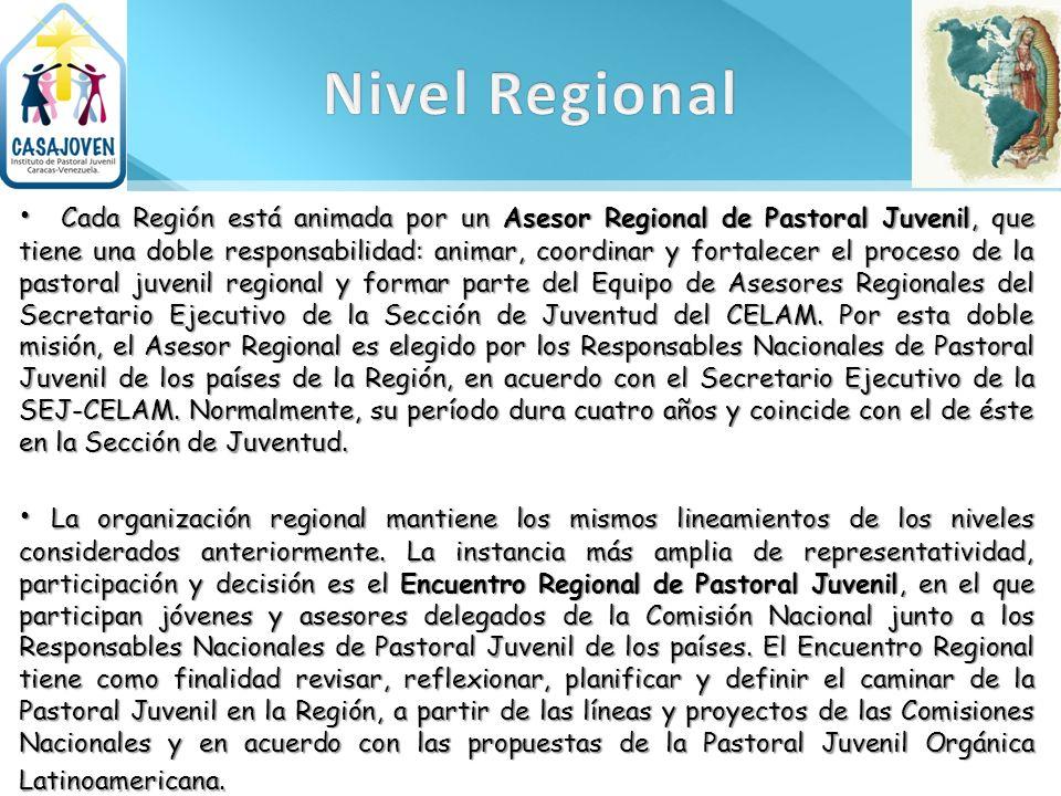 Cada Región está animada por un Asesor Regional de Pastoral Juvenil, que tiene una doble responsabilidad: animar, coordinar y fortalecer el proceso de