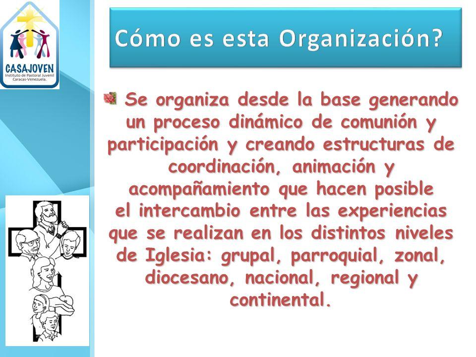 Se organiza desde la base generando un proceso dinámico de comunión y participación y creando estructuras de coordinación, animación y acompañamiento