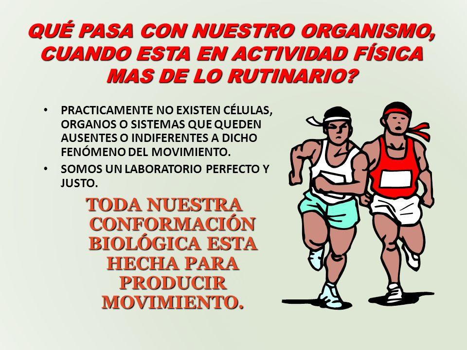 PILARES DE LA MEDICINA PREVENTIVA ( Salud física ) BUENA ACTIVIDAD FÍSICA BUENA ALIMENTACIÓN BUENA HIGIENE