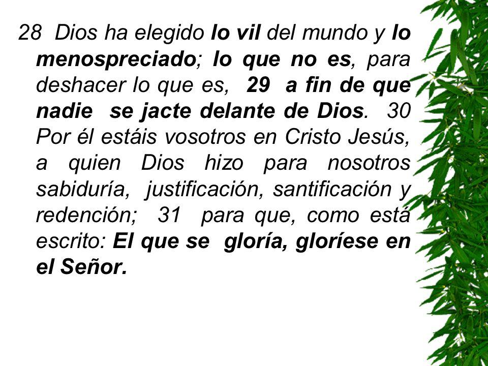 28 Dios ha elegido lo vil del mundo y lo menospreciado; lo que no es, para deshacer lo que es, 29 a fin de que nadie se jacte delante de Dios. 30 Por
