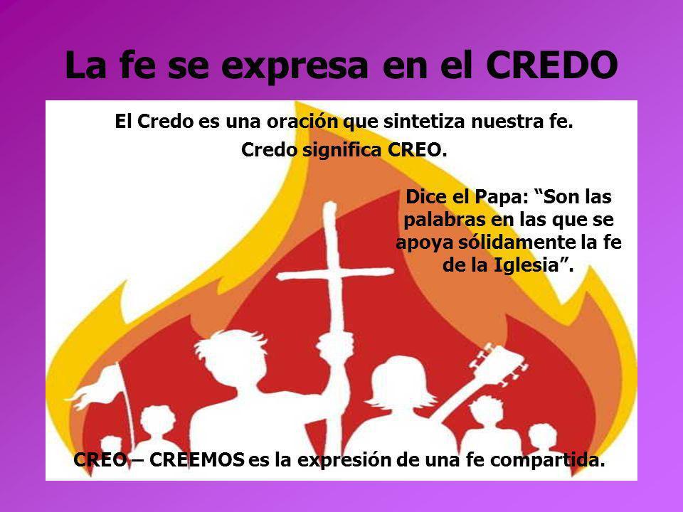 La fe se expresa en el CREDO El Credo es una oración que sintetiza nuestra fe. Credo significa CREO. CREO – CREEMOS es la expresión de una fe comparti