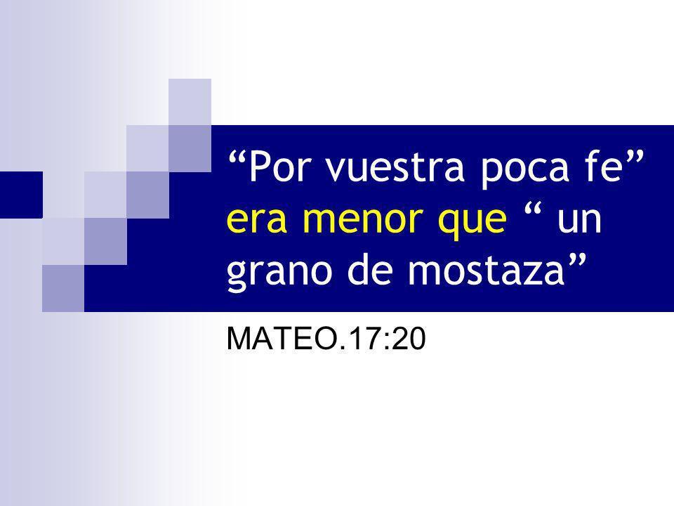 Por vuestra poca fe era menor que un grano de mostaza MATEO.17:20
