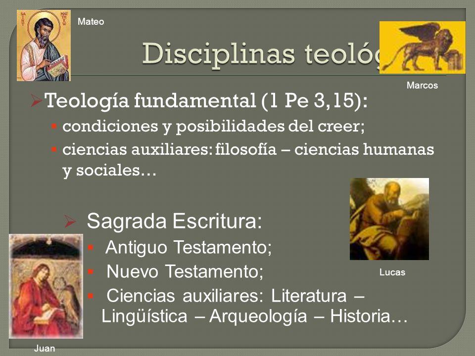 Teología fundamental (1 Pe 3,15): condiciones y posibilidades del creer; ciencias auxiliares: filosofía – ciencias humanas y sociales… Sagrada Escritu