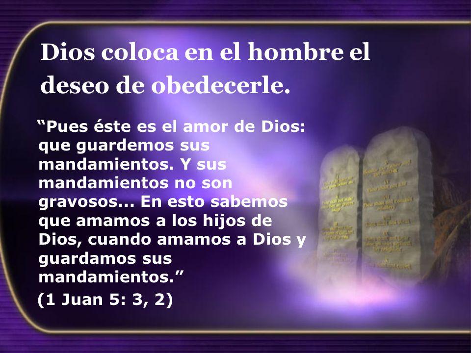 Dios coloca en el hombre el deseo de obedecerle. Pues éste es el amor de Dios: que guardemos sus mandamientos. Y sus mandamientos no son gravosos... E