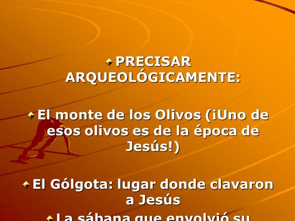 PRECISAR ARQUEOLÓGICAMENTE: El monte de los Olivos (¡Uno de esos olivos es de la época de Jesús!) El Gólgota: lugar donde clavaron a Jesús La sábana q