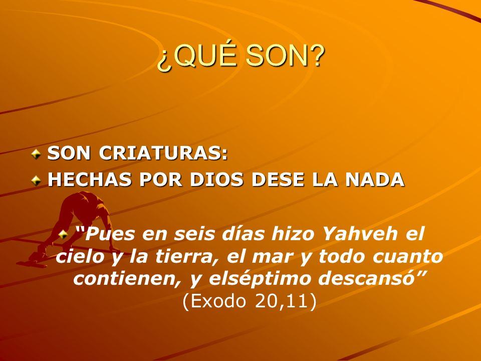 ¿QUÉ SON? SON CRIATURAS: HECHAS POR DIOS DESE LA NADA Pues en seis días hizo Yahveh el cielo y la tierra, el mar y todo cuanto contienen, y elséptimo