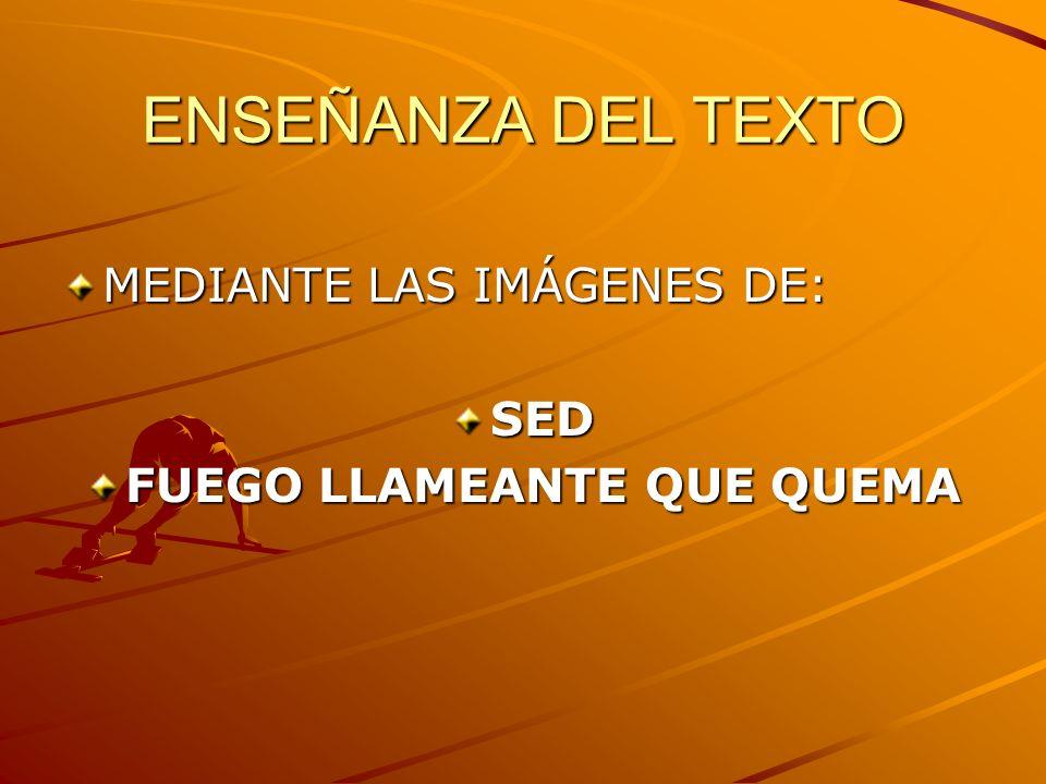 ENSEÑANZA DEL TEXTO MEDIANTE LAS IMÁGENES DE: SED FUEGO LLAMEANTE QUE QUEMA