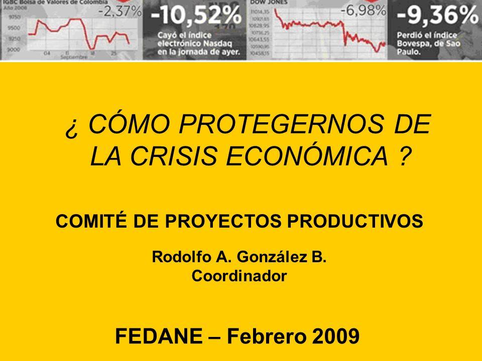 ¿ CÓMO PROTEGERNOS DE LA CRISIS ECONÓMICA .COMITÉ DE PROYECTOS PRODUCTIVOS Rodolfo A.