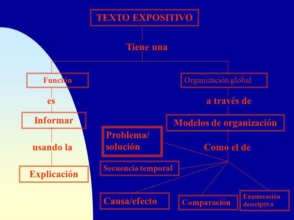 TEXTO EXPOSITIVO Tiene una Organización globalFunción esa través de Informar Modelos de organización usando laComo el de Explicación Causa/efecto Comp
